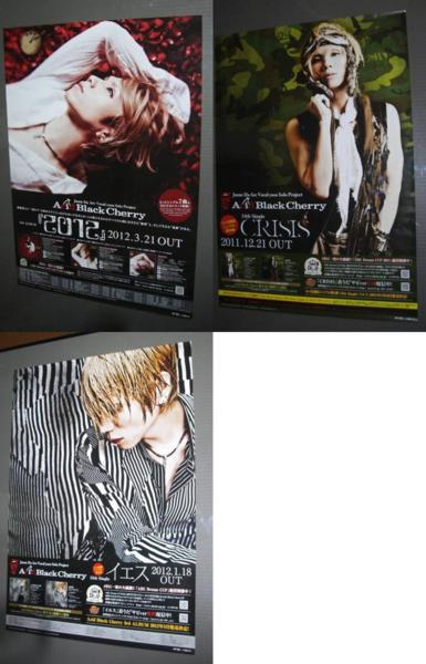 AcidBlackCherry,告知ポスター,2012,CRISIS,イエス