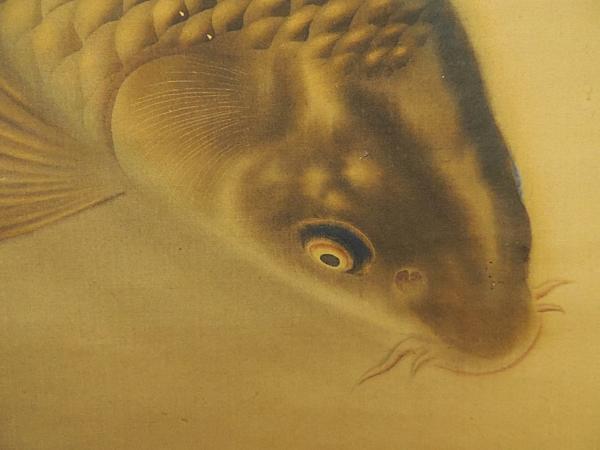 日本画 吉田鯉城筆 鯉の図 牙軸絹本肉筆共箱 吉田霞山 掛軸